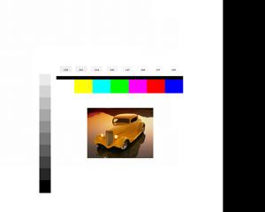 Figure 4 - Auto Color Gain Test Pattern